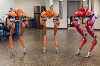 Cassie enseña a otros robots a caminar