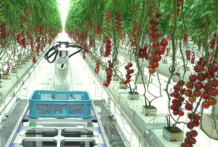 Denso invierte en automatizar la agricultura